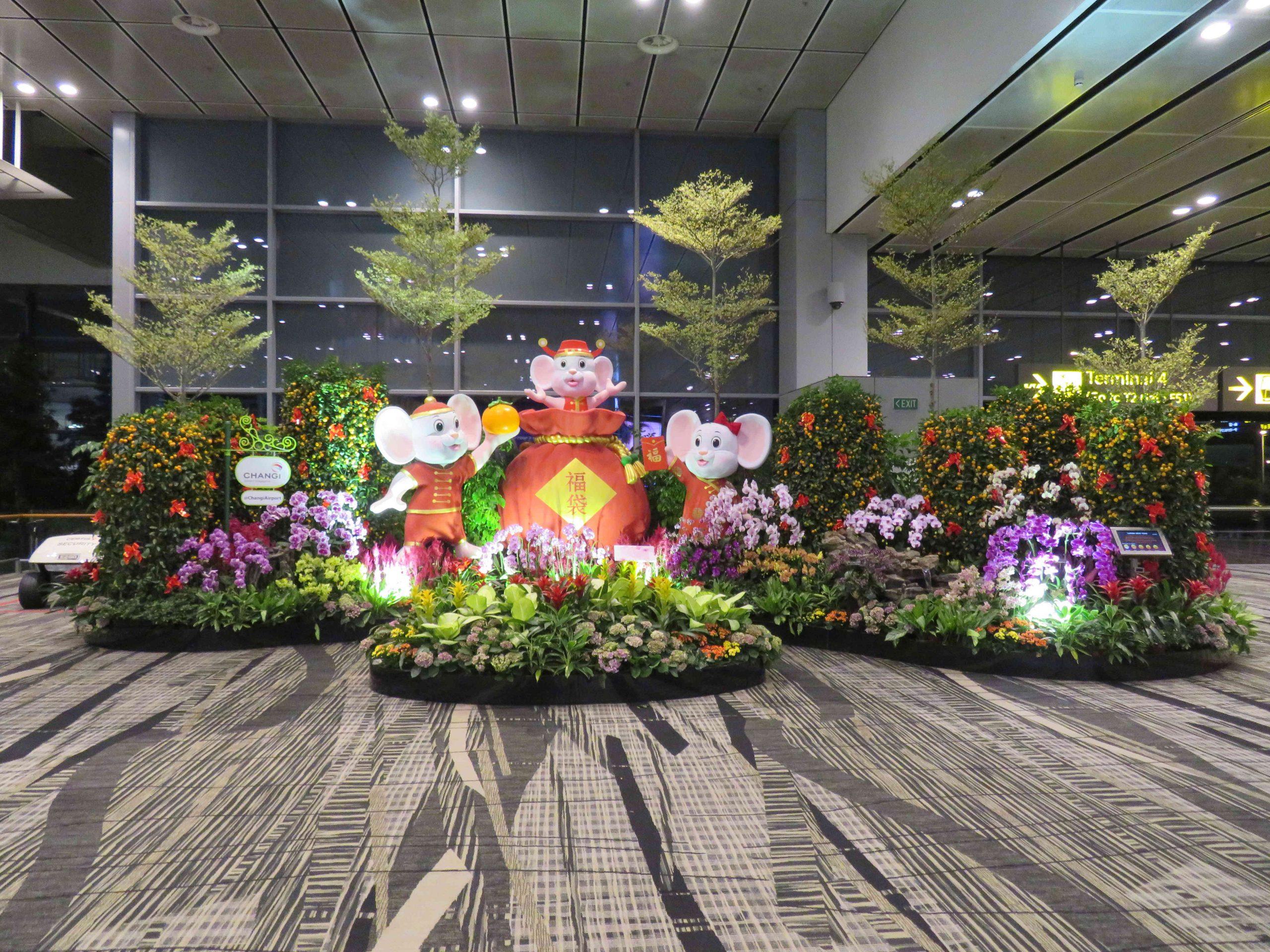 Massif d'Orchidées Aéroport de Singapour Changi